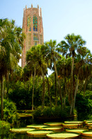 Bok Tower and Lake Wales Road Trip
